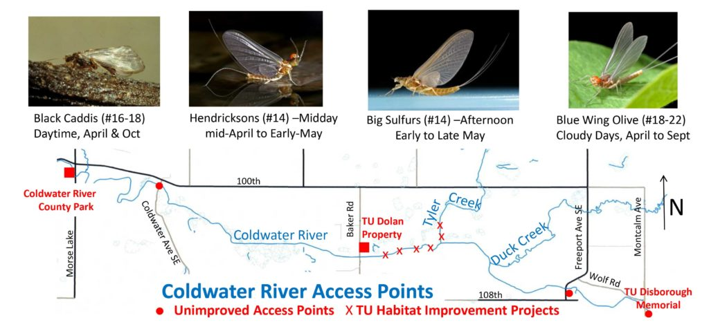Coldwater River Map and Hatch Guide