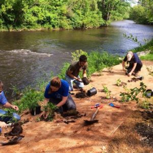 TU receives tree planting grant in Michigan's Rogue River watershed