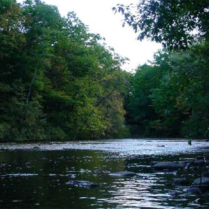 Volunteers needed for White River RIVERS Assessment