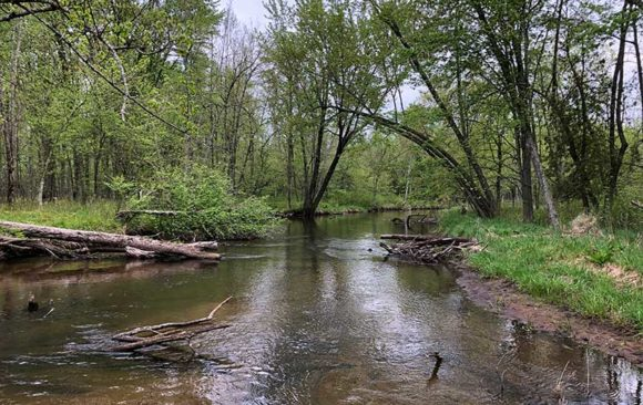 White River stream clean-up set for October 2