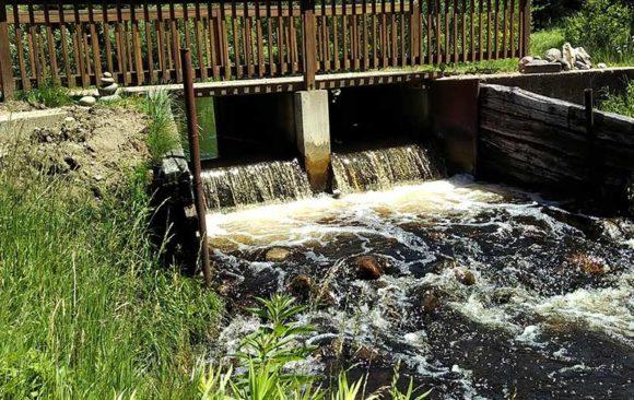 Kinney Creek dam removal project